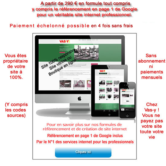 agence creation de site internet Vierzon